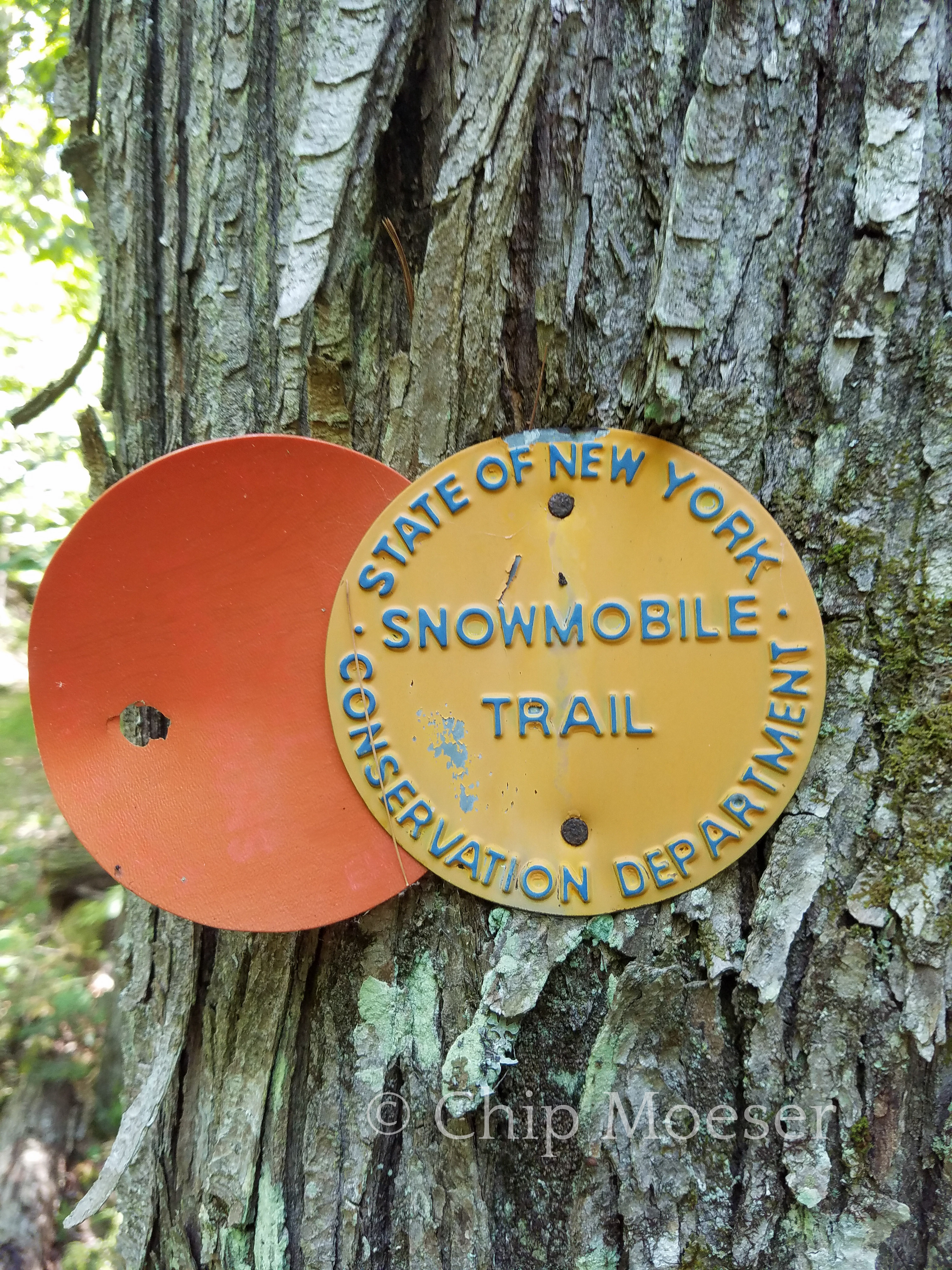 DEC Snowmobile Trail marker