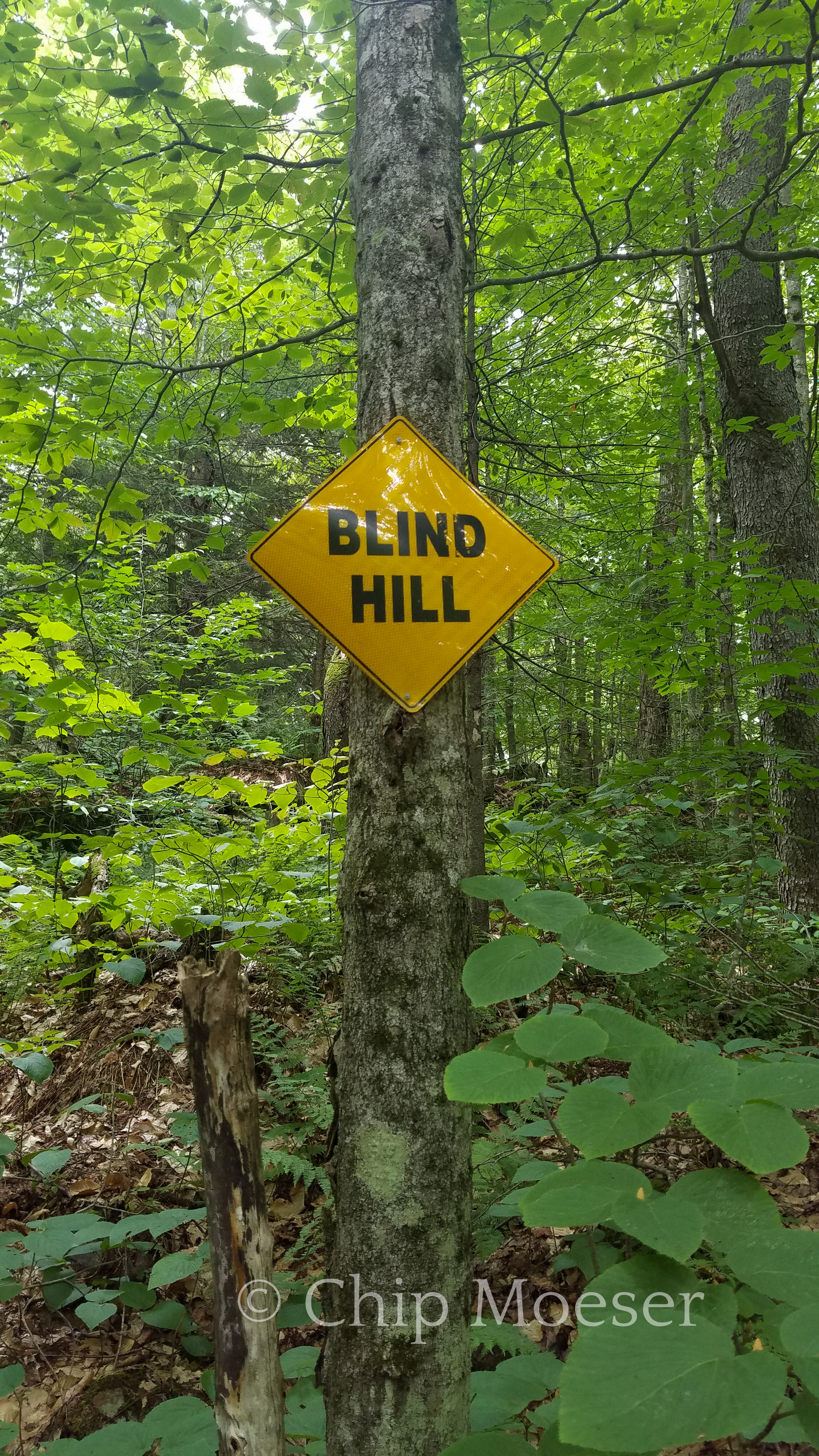 Blind hill